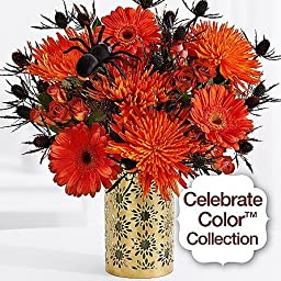 Shop Stop - eshopclub Same Day Flower Delivery - Online Christmas Flower - ChristmasFlowers - ChristmasFlowers Bouquets - Send Christmas Flowers
