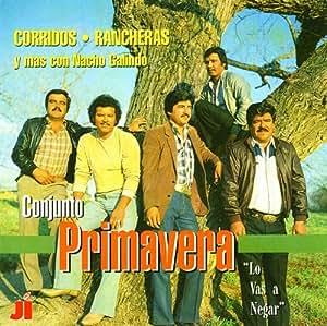 Conjunto Primavera - Los Vas A Negar - Amazon.com Music