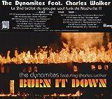 echange, troc The Dynamites & Charles Walker - Burn It Down