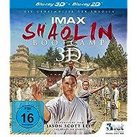 Shaolin Bootcamp 3D [3D