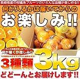 訳あり 長崎県産 みかん オレンジ 柑橘系フルーツごちゃ混ぜ3種3kgセット/同梱不可/常温便