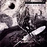 Secrets of the Beehive by Sylvian, David [Music CD]