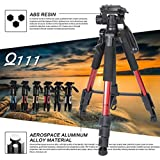 Baoblae Zomei Q111 Camera Tripod Lightweight Aluminum Alloy Tripod Kit With Pan Head For DV Digital Camera Sliver