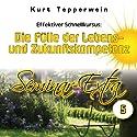Effektiver Schnellkursus: Die Fülle der Lebens- und Zukunftskompetenz (Seminar Extra 5) Hörbuch von Kurt Tepperwein Gesprochen von: Kurt Tepperwein