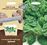 Mr. Fothergill's 21383 6m Length Get Growing Samish F1 Spinach Seed Tape