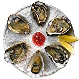 Oyster Plate 6 Hole 25.5cm | Oyster Dish Oyster Server Porcelain Oyster Plate