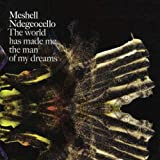 echange, troc Meshell Ndegeocello - The World Has Made Me the Man of My Dreams