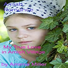 My True Love in Amish Village (       UNABRIDGED) by Amirna Miller Narrated by Violet Meadow