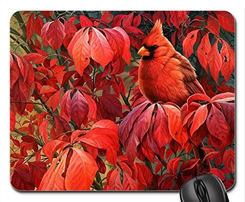 Joni Johnson Godsy Mouse Pad, Mousepad (Birds Mouse Pad)