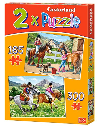 2-Puzzles-At-horse