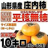 【訳あり】 山形県庄内産 庄内柿 種なし 10kg(60~80玉前後)