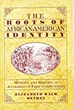 img - for The Roots of African-American Identity: Memory and History in Antebellum Free Communities book / textbook / text book