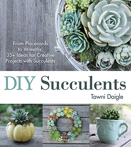 DIY Succulents: From Placecards to Wreaths, 35+ Ideas for Creative Projects with Succulents PDF