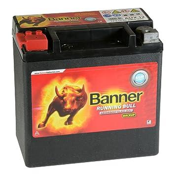 Autobatterie Starterbatterie Batterie 12V 44Ah Banner Power Bull P4409 NEU