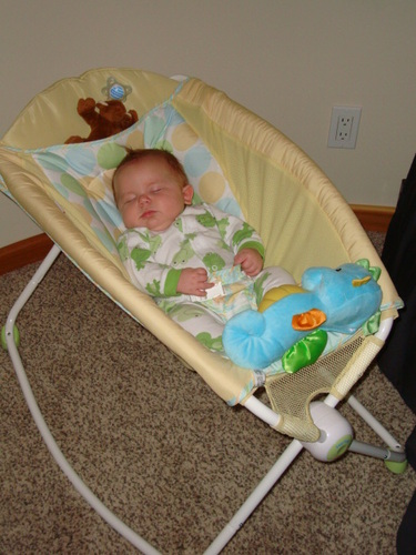Baby Swing Reviews 187 Blog Archive 187 Check Out This Fisher