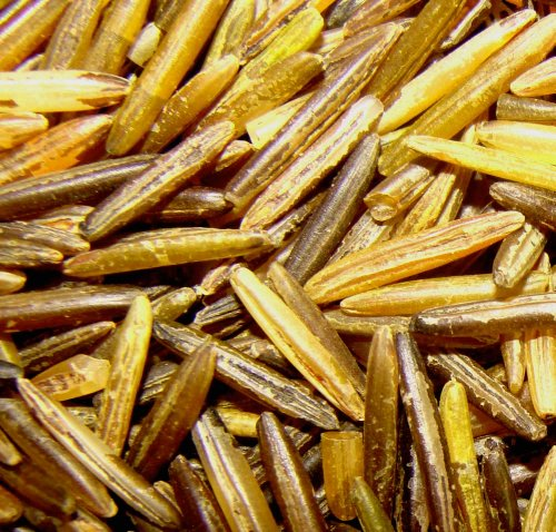 1 LB MN WILD RICE AMERICAN INDIAN HAND HARVESTED & WOOD PARCHED ALL NATURAL! (Mn Wild Rice compare prices)