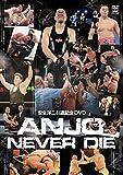 安生洋二引退記念DVD ANJO NEVER DIE