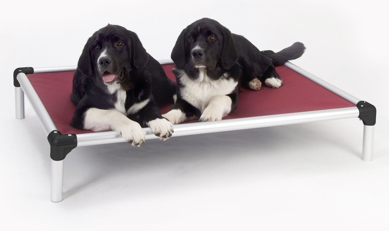 Orthopedic Dog Beds For Great Danes : WebNuggetz.com