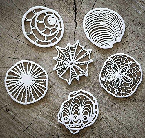 Drink Coasters By Tiil Seashell Inspired Designer Coaster