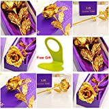 House of Quirk Great Valentine's Gift 24K Gold Rose With Gift Box And Carry Bag - Best Gift For Loves Ones, Valentine's Day, Mother's Day, Anniversary, Lover's Flower Gold Dipped Rose With Gift Box For Women Girls Gifts and 1 mobile phone holder free gift for charging.