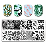 Summer Fruit Nail Art Stamping Template Tropical Punch Pattern Rectangle Image Plate Stamping Polish Needed BP-L076 (Color: BP-L076)