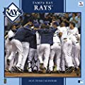 Turner Perfect Timing 2015 Tampa Bay Rays Team Wall Calendar, 12 x 12 Inches (8011652)
