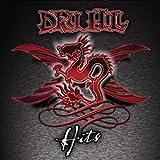 echange, troc Dru Hill - Hits
