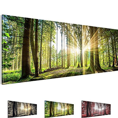 Bild-SENSATIONSPREIS-Bilder-auf-Vlies-Leinwand-Wandbild-Wald-Natur-Feng-Shui-110-x-40-cm-503811b