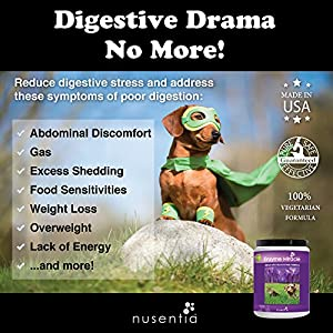 Enzymes for Dogs - Enzyme Miracle - Digestive Enzymes for Dogs Powder - 364 Servings