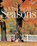 Tree For All Seasons (Avenues)