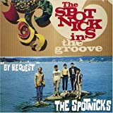 In The Groove/By Request Spotnicks