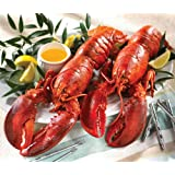 Lobster Gram LG2Q LOBSTER GRAM DINNER FOR TWO WITH 1.25 LB LOBSTERS by Lobster Gram
