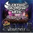 Lynyrd Skynyrd I Know A Little