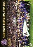 J���[�O�I�t�B�V����DVD �T���t���b�`�F�L��2013���[DSSV-148][DVD]