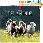 Isl�nder 2016: Original St�rtz-Kalend...