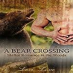 A Bear Crossing | Lexi Love
