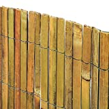 Bambu domande e risposte giardino for Bambu in vaso prezzo