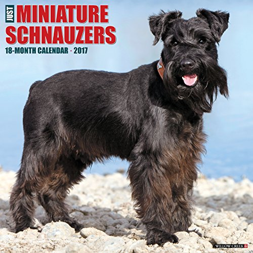 Just Miniature Schnauzers 2017 Wall Calendar (Dog Breed Calendars)