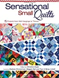Sensational Small Quilts: 15 Projects from Wall Hangings to Throws