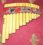Professional Curved Small Antara Pan Flute 13 Pipes Nazca Designs Case Included Item in USA