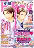 小説 b-Boy (ビーボーイ) 2009年 02月号 [雑誌]