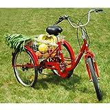 DXP-Dreirad-Fr-Erwachsene-Seniorenrad-Erwachsenendreirad-24-Zoll-Shimano-6-Gang-FT-7009-Rot