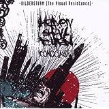 Bildersturm - Iconoclast II (The Visual Resistance)