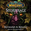 World of Warcraft: Stormrage Audiobook by Richard A. Knaak Narrated by Richard Ferrone