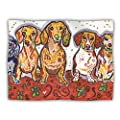 "Kess InHouse Rebecca Fischer ""Maksim Murray Enzo Ruby and Willy"" Daschunds Pet Dog Blanket, 40 by 30-Inch"