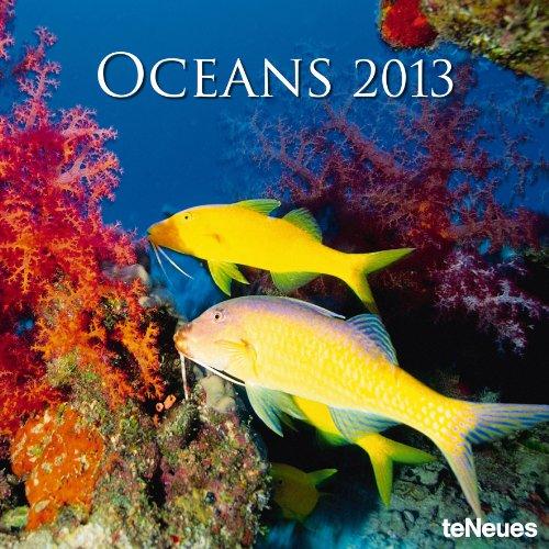 2013 Oceans Wall Calendar