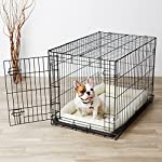 AmazonBasics Single-Door Folding Metal Dog Crate - Medium (36x23x25 Inches) by AmazonBasics