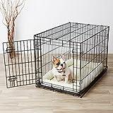 AmazonBasics Single-Door Folding Metal Dog Crate - Medium (36x23x25 Inches)