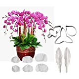 AK ART KITCHENWARE Sugar Paste Flower Veining Molds Petal Veiners Leaf Cutter Fontant Mold Cake Craft Tools (Orchid) (Color: Orchid)
