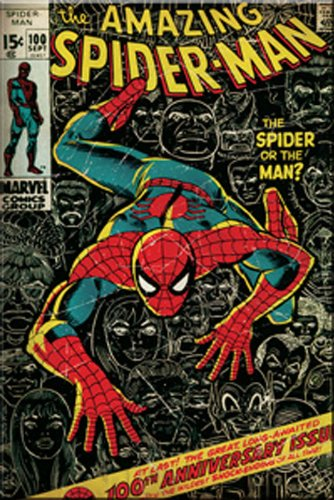 Licenses Products Marvel Comics Spider Man Comic Cover Magnet